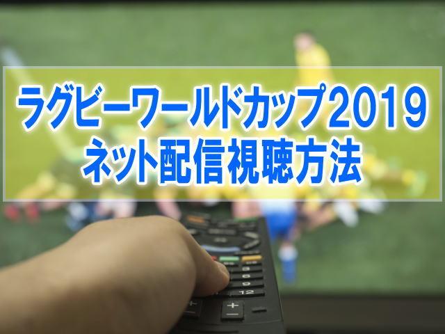 ラグビーワールドカップ2019のライブ配信はスカパー!スマホ&テレビ放送日程
