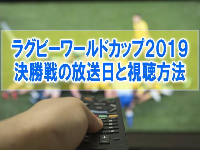 ラグビーワールドカップ2019決勝&3位決定戦はいつ?テレビ放送日程や無料見逃し動画